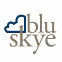 Blu Skye Consulting logo
