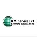 BM SERVICE SRL logo