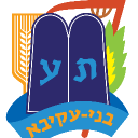 Bnei Akiva - Sandton Branch logo