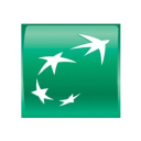 Bnp Paribas Group logo icon