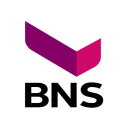 BNS Container as logo