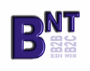 BNT Solutions, Inc. logo