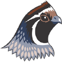Bobwhite Energy Services , LLC logo