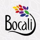 Bocali Tu Tiempo Saludable logo