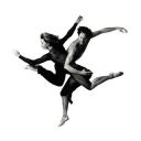 BodyVox Dance Center logo