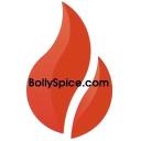 BollySpice Magazine logo