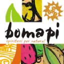 Bomapi s.r.l. logo