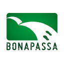 Bonapassa Cinema & Audiovisual Consulting S.L. logo