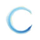 Bonheur Et Santé logo icon