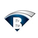 Boras logo icon