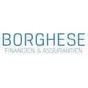 Borghese Financien & Assurantien BV logo
