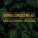 Borka Consulting AS logo