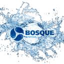 Bosque Systems, LLC logo