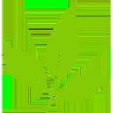 Logo BotanoHealth