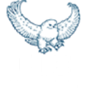 Bowhead Support logo icon