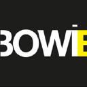 Bowie Conseil logo