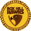 Box Hill Hawks FC logo