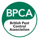 Bpca logo icon