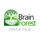 Brain Forest Costa Rica logo