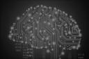 Brain Research Institute logo