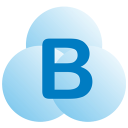 Brainasoft logo icon