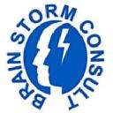 Brain Storm Consult Ltd logo