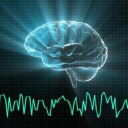 BrainTrainUK & Neurofeedback4Performance logo