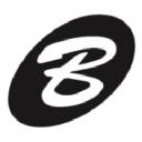 Brandable Web LLC logo
