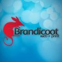 Brandicoot logo