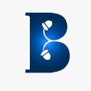 Logo of brandingnuts.com