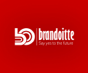 Brandoitte Technology Solutions logo