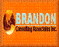 Brandon Consulting Associates, Inc logo