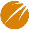 Brandwise logo icon