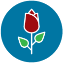 Bread and Roses Web Design logo