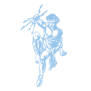 Breedveld & Schröder logo