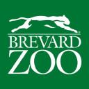Brevard Zoo logo icon