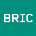 Bric logo icon