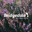 Bridgedale logo icon