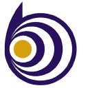 Brilliant Lighting logo icon