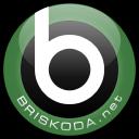 Briskoda logo icon