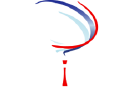 BRIUS Telecom Solutions LLC logo