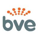 Broadcastvision Entertainment logo