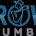 Brown Plumbing LLC logo