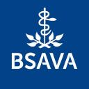 Bsava logo icon