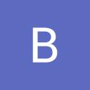 BS Forklifts International B.V. logo