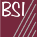 BSI (Business Systems, Inc.) logo