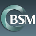 Bsm Consulting logo icon