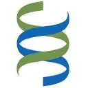 Bsms logo icon