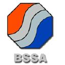 British Stainless Steel Association logo icon