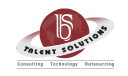 BS Talent Solutions Pvt.ltd. logo